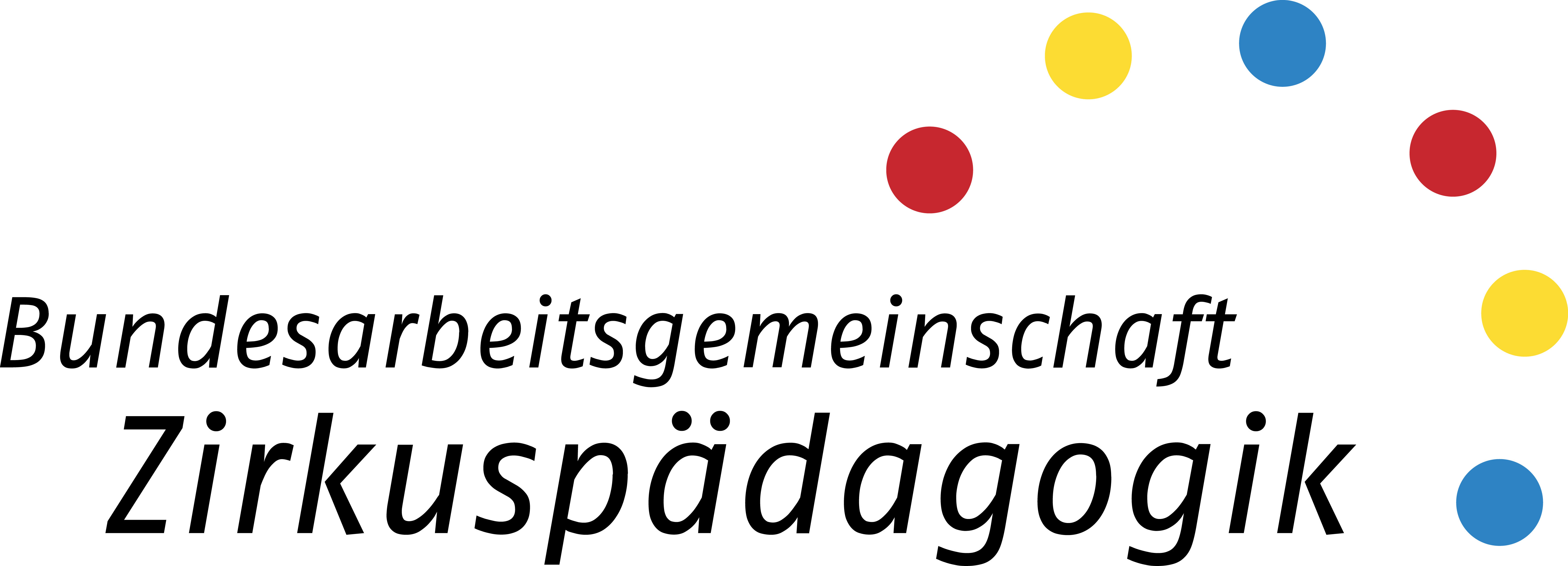 Die Bundesarbeitsgemeinschaft Zirkuspädagogik e.V